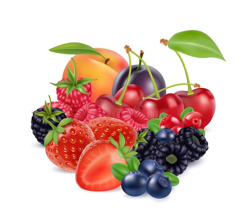 Baies et fruits frais image réaliste du vecteur 3d illustration stock