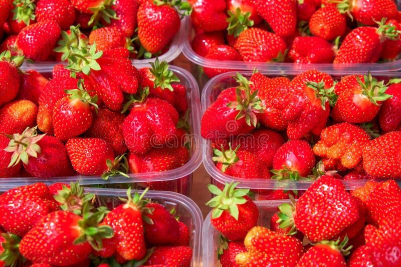 Baies juteuses savoureuses de fraise dans des boîtes images libres de droits