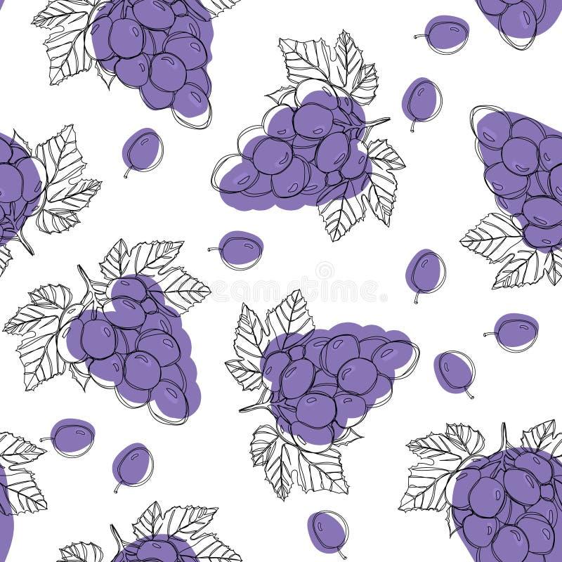 Baies mûres bleues de raisin, modèle sans couture d'isolement sur le fond blanc illustration de vecteur