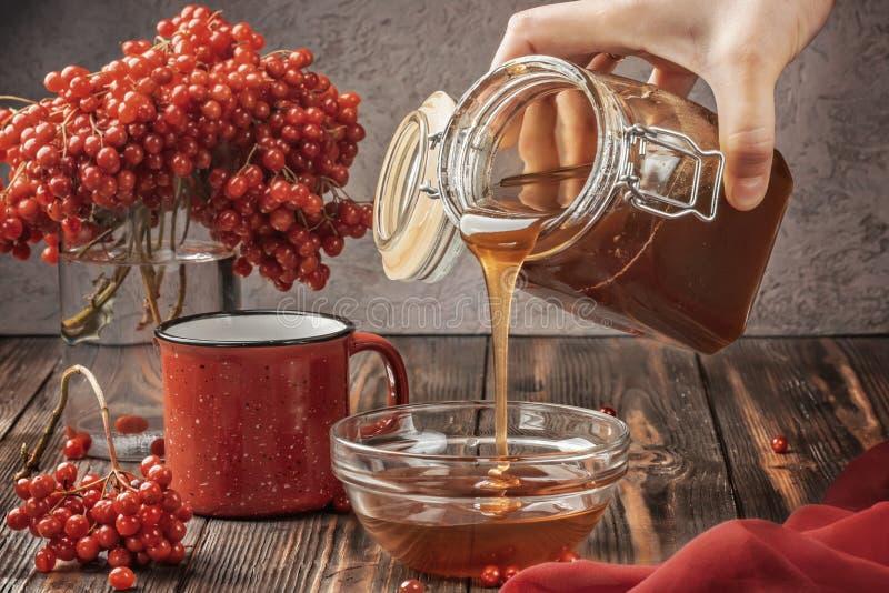 Baies toujours de la vie d'un viburnum dans un verre et une tasse de thé et de miel chauds photographie stock