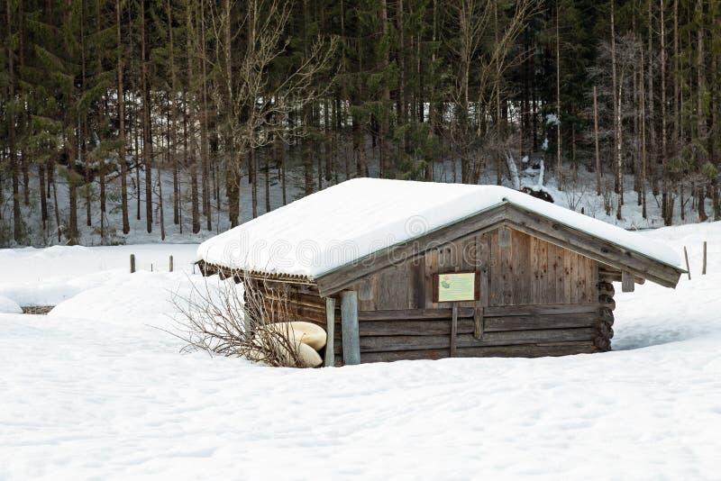 Baigner la hutte au lac Geroldsee en hiver photographie stock libre de droits