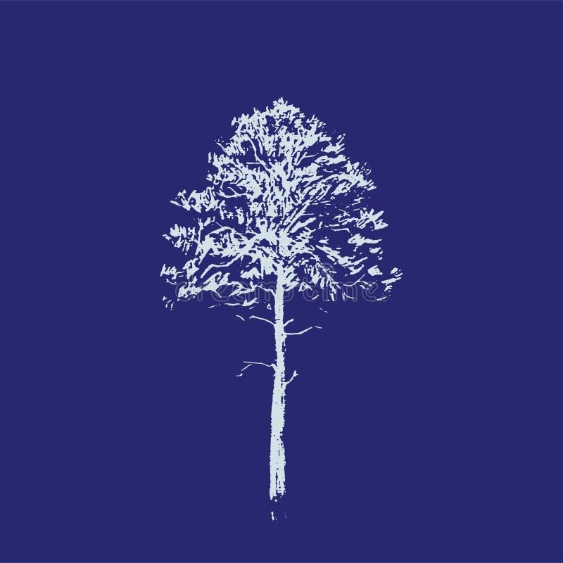 baikal ανασκόπησης δέντρο πεύκων λιμνών Σχέδιο γραμμών που απομονώνεται στο μπλε υπόβαθρο Συρμένο χέρι σκίτσο επίσης corel σύρετε ελεύθερη απεικόνιση δικαιώματος
