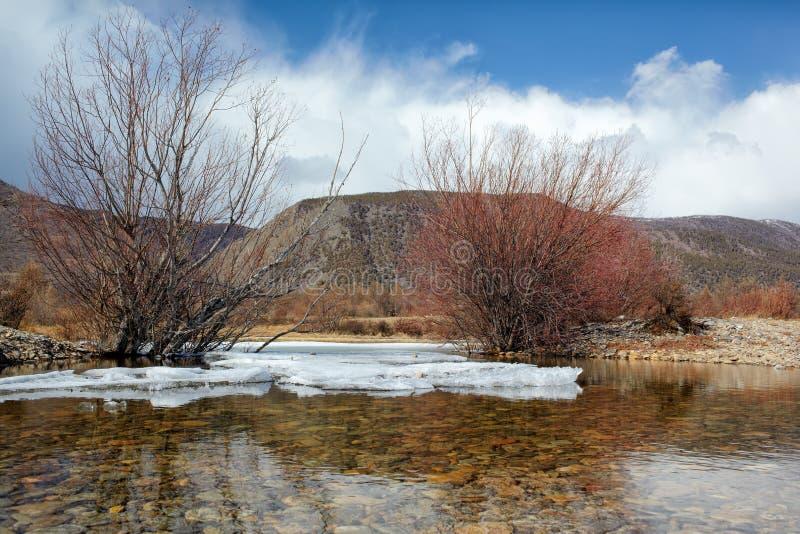 Baikal in de winter royalty-vrije stock foto's