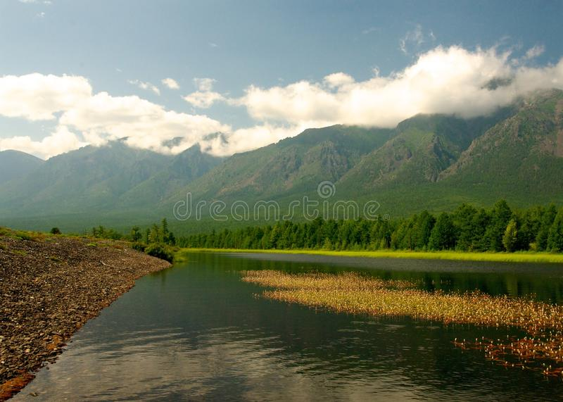 Baikal landscape with green spring forest. Russia. Siberia stock photo