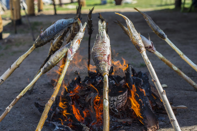 Baikal omul ψήνεται στους άνθρακες στοκ εικόνες