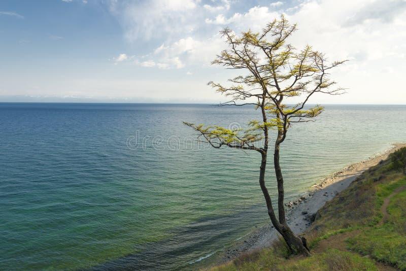 Baikal See lizenzfreie stockfotos