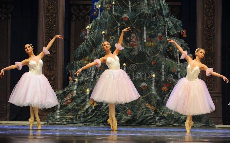 Bailado da dança da menina da saia do fio - a quebra-nozes do bailado imagem de stock