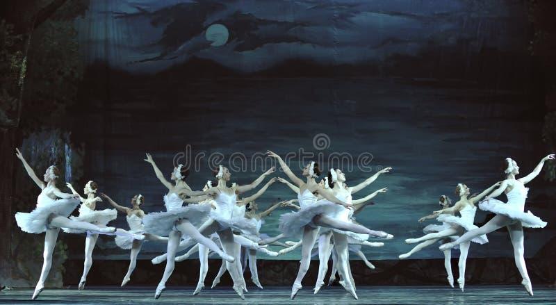 Bailado do lago swan executado pelo bailado real russian imagens de stock