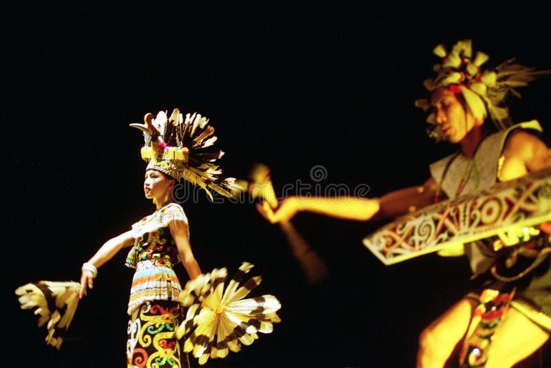 Bailarín de Enggang del Dayak imagen de archivo