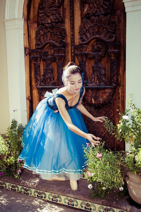 Bailarina fotografia de stock royalty free