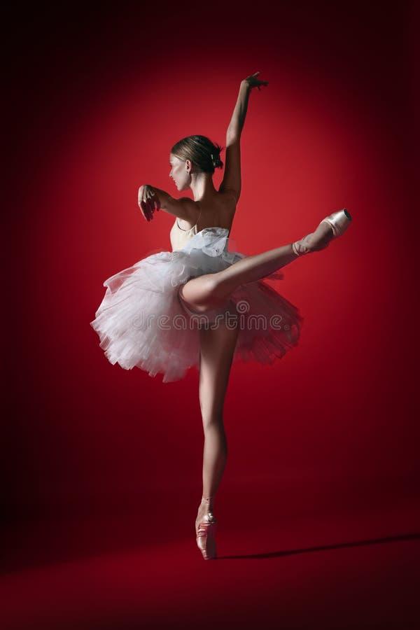 Bailarina Baile femenino agraciado joven del bailarín de ballet en el studioskill rojo Belleza del ballet clásico fotos de archivo
