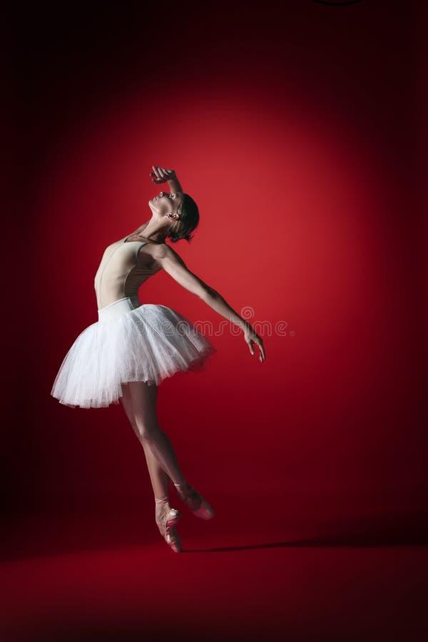 Bailarina Baile femenino agraciado joven del bailarín de ballet en el studioskill rojo Belleza del ballet clásico imagen de archivo libre de regalías