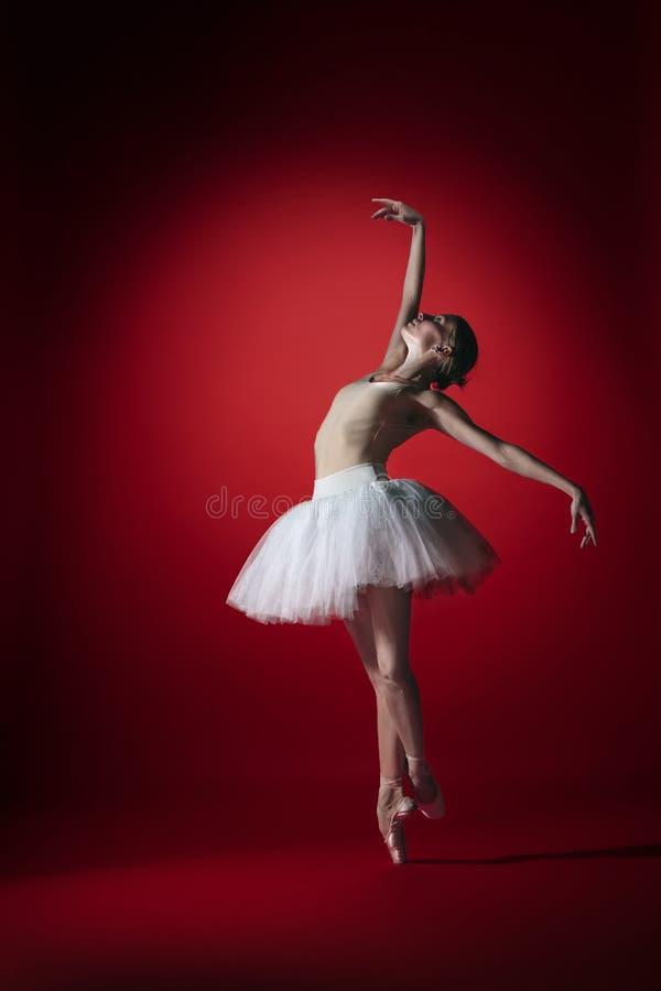 Bailarina Baile femenino agraciado joven del bailarín de ballet en el studioskill rojo Belleza del ballet clásico imagen de archivo