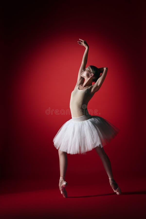 Bailarina Baile femenino agraciado joven del bailarín de ballet en el studioskill rojo Belleza del ballet clásico fotografía de archivo libre de regalías