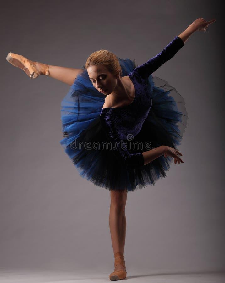 Bailarina bonita com corpo perfeito no equipamento azul do tutu que levanta no estúdio Arte do balé clássico imagens de stock
