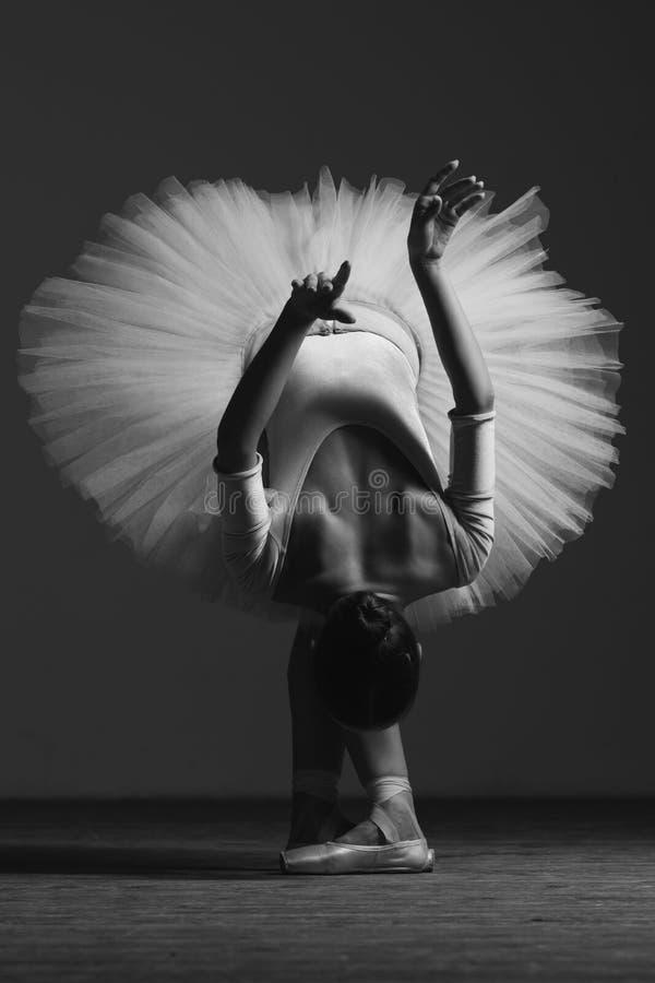 A bailarina bonita nova está levantando no estúdio fotografia de stock royalty free