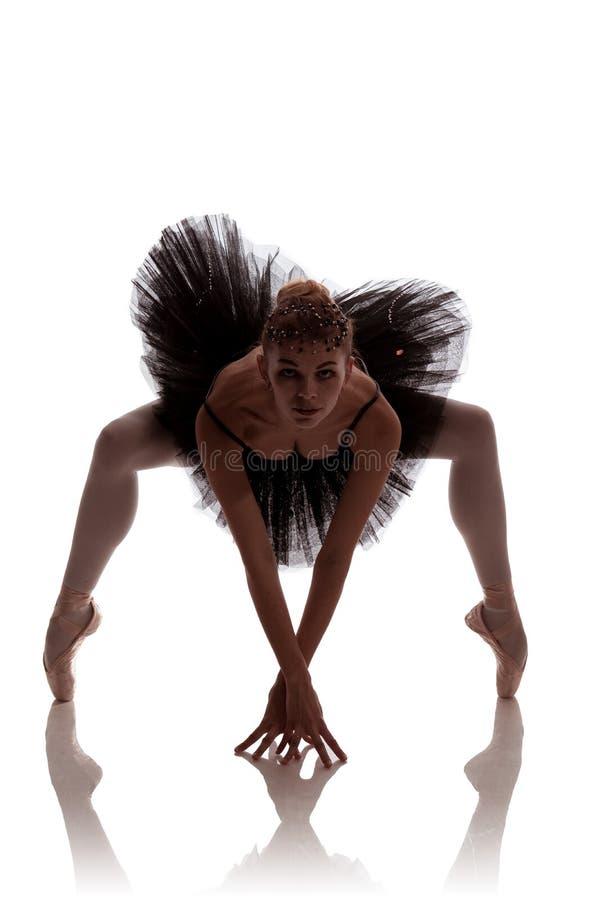 Bailarina de la mujer en el tutú negro que presenta en el fondo blanco imagen de archivo