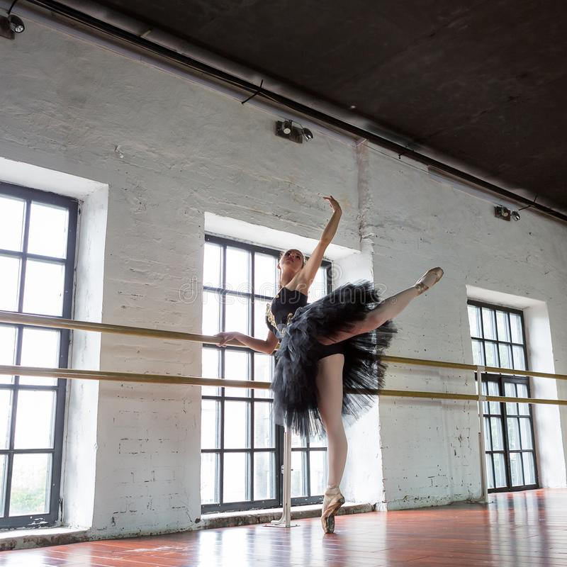 Bailarina do ensaio no sal?o Assoalho de madeira, janelas muito grandes Bailarina bonita na sala do ensaio foto de stock royalty free