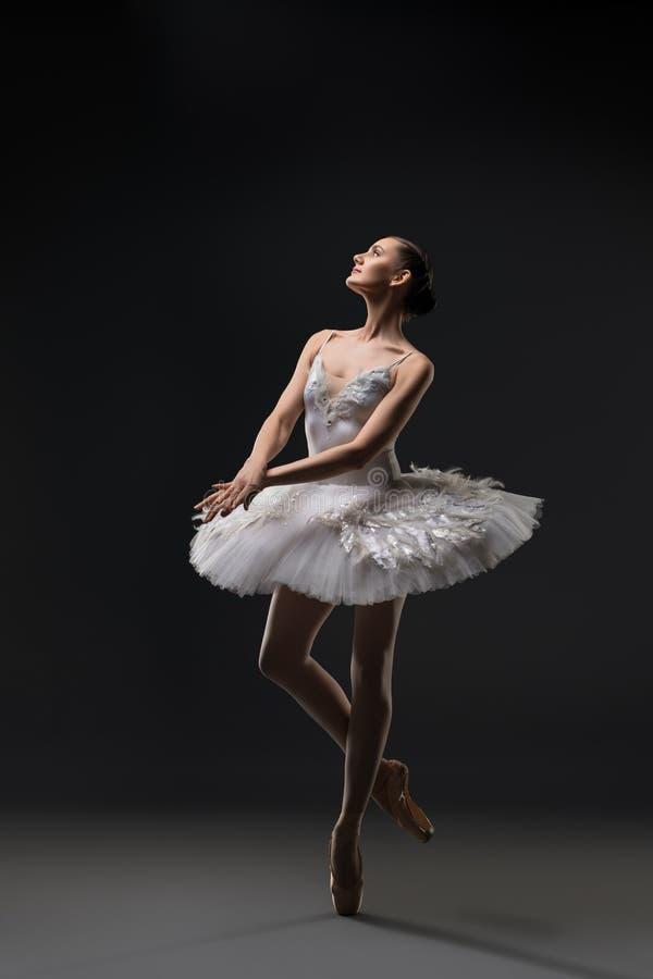 Bailarina na dança branca do tutu na obscuridade foto de stock royalty free
