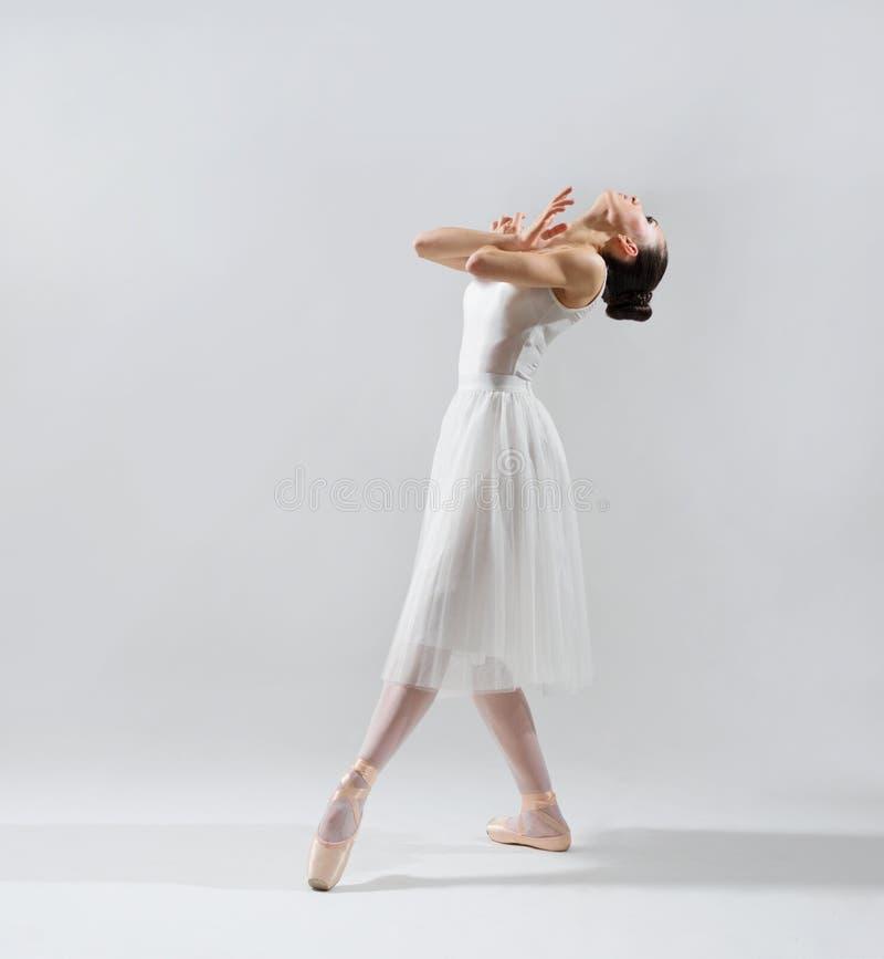 Bailarina na versão cinzenta fotos de stock