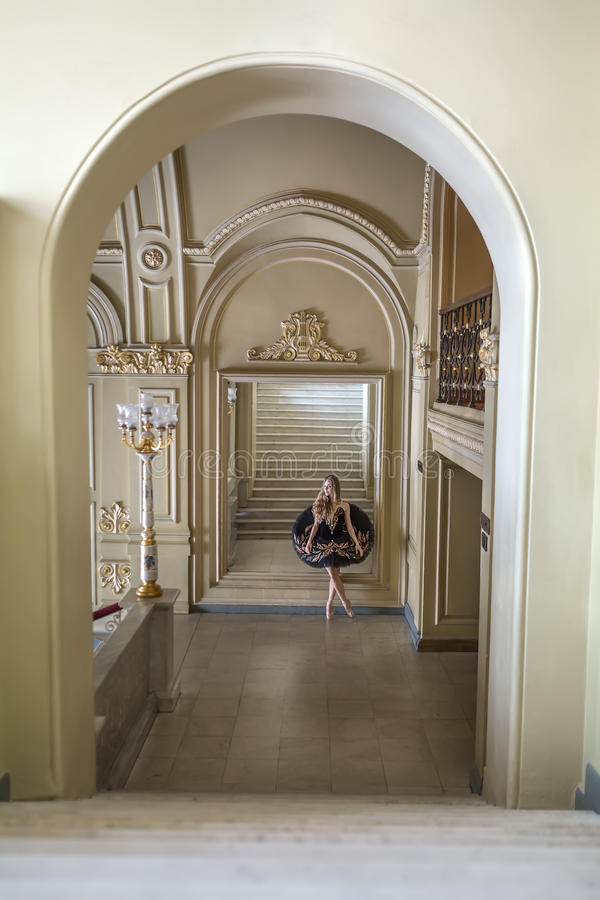 Bailarina que levanta no interior imagem de stock royalty free