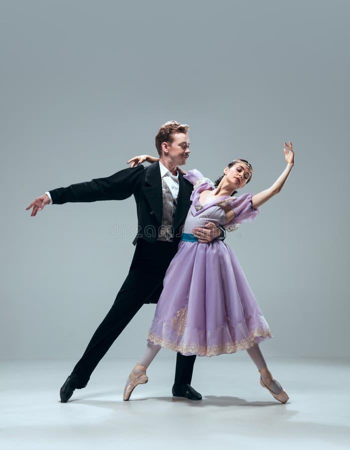 Bailarines contemporáneos del salón de baile en fondo gris del estudio fotos de archivo libres de regalías