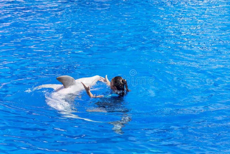 Baile de la mujer del instructor con el delfín en una piscina fotos de archivo libres de regalías