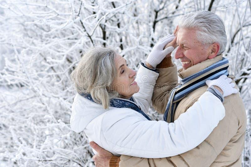 Baile mayor de los pares en el invierno al aire libre foto de archivo libre de regalías