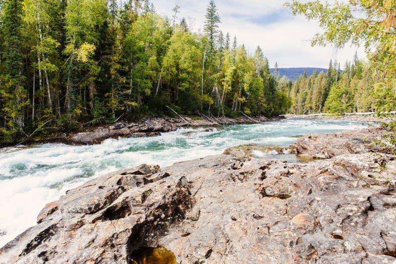 BaileyÂs Rutsche, Wells Gray Provincial Park BC Kanada stockfotografie