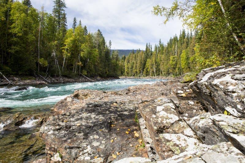 BaileyÂs Rutsche, Wells Gray Provincial Park BC Kanada stockfotos