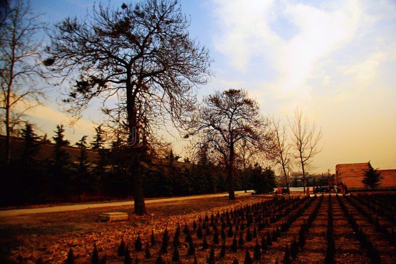 Baimatempel in Luoyang royalty-vrije stock afbeeldingen