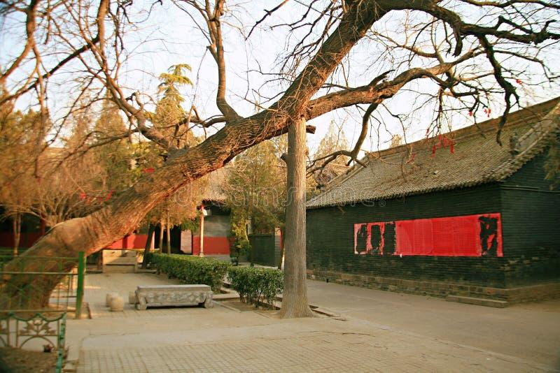 Baimatempel in Luoyang royalty-vrije stock afbeelding