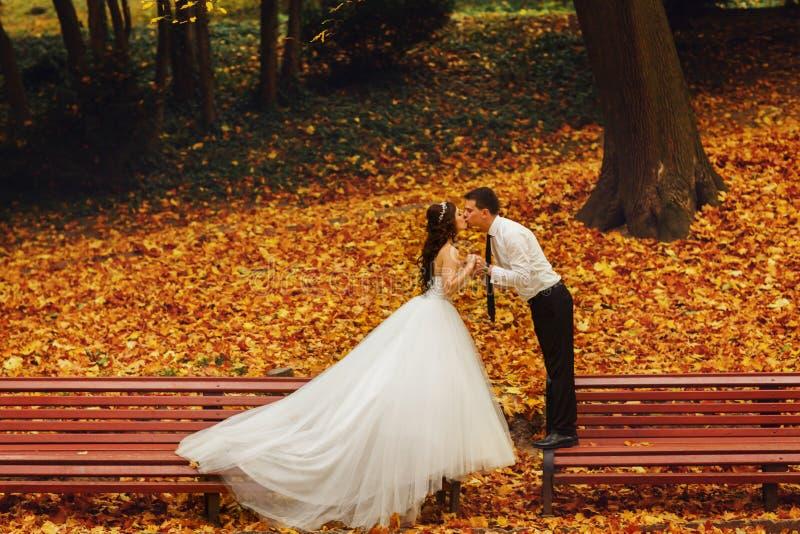 Baiser de jeunes mariés se tenant sur les différents bancs dans la PA photos stock