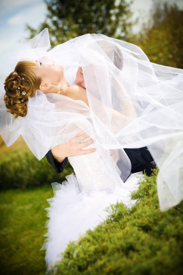 Baiser de mariée et de marié photo libre de droits
