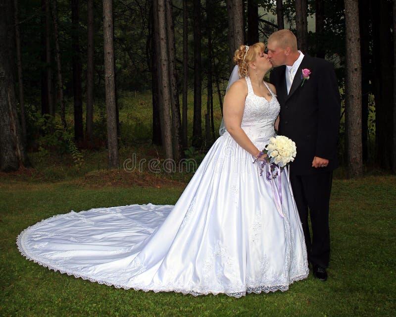 Baiser formel de verticale de mariée et de marié photos libres de droits