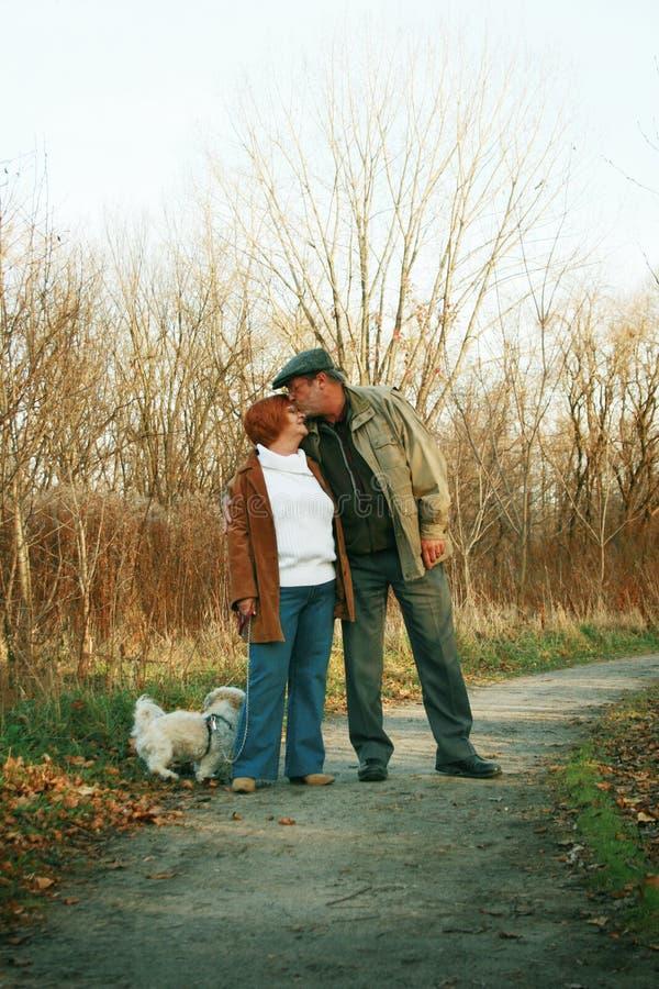 Baisers de couples photos stock