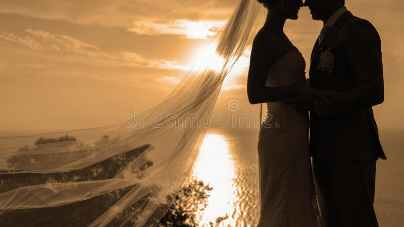 Baisers de couples de silhouette images libres de droits