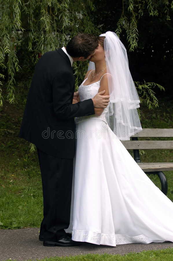 Baisers de mariée et de marié photographie stock libre de droits