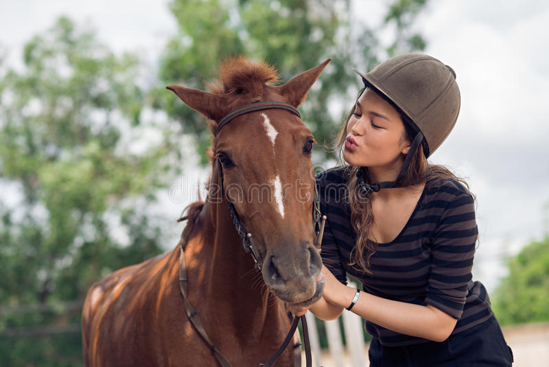 Baisers du cheval images stock