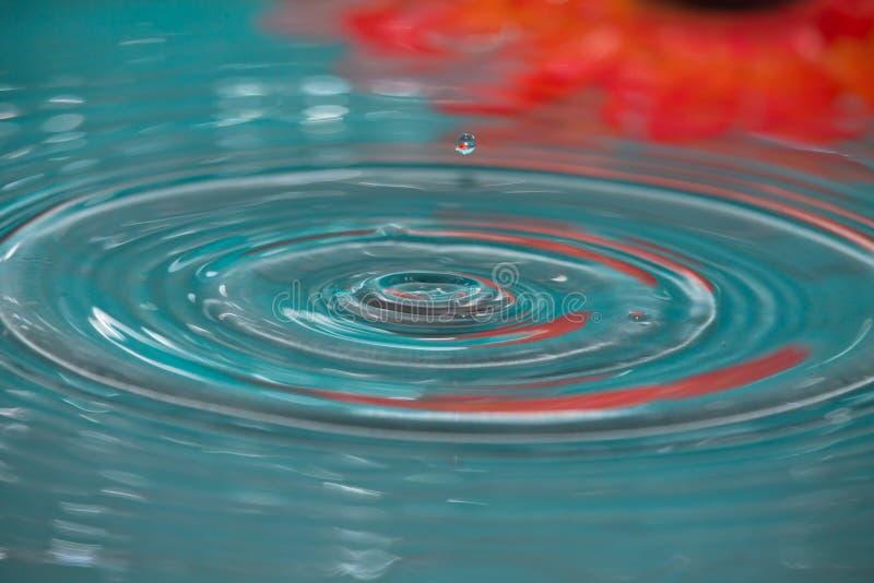 Baisse d'éclaboussure de l'eau avec la fleur rouge à l'arrière-plan photos stock