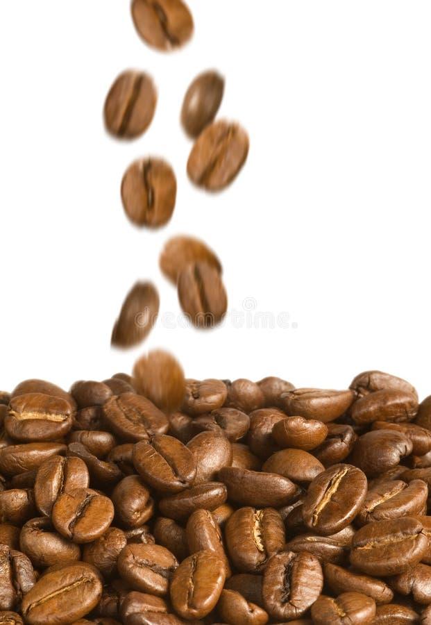 Baisse de grains de café photos stock