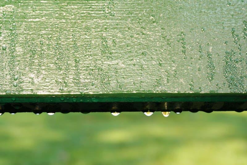 Baisse de l'eau sur une partie de banc en bois vert dans le jardin d'été de matin photo stock