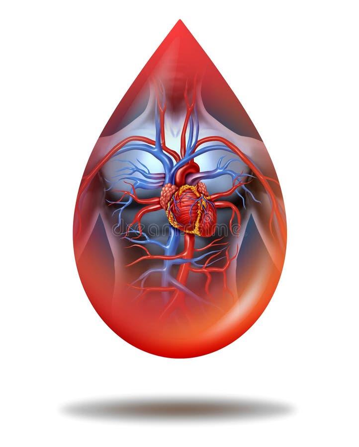 Baisse humaine de sang de coeur illustration de vecteur