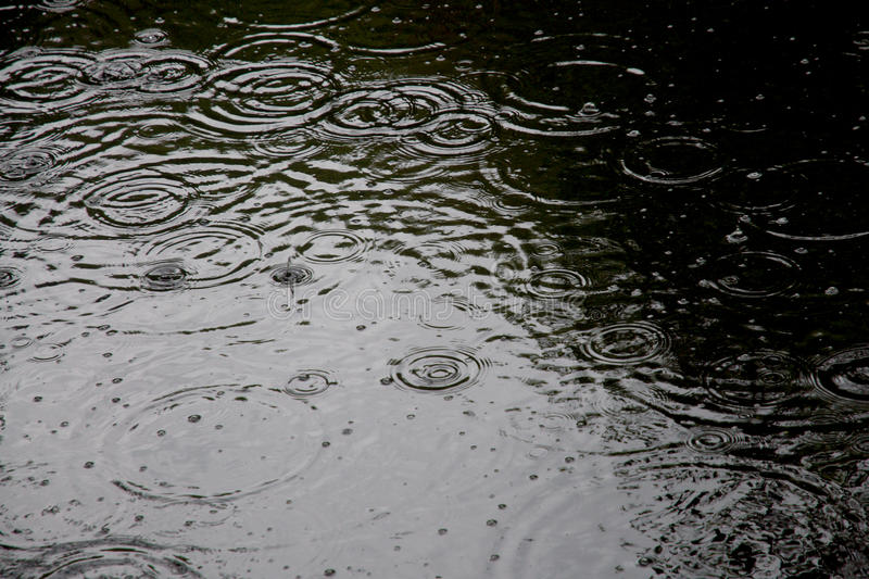 Baisses de pluie photo stock