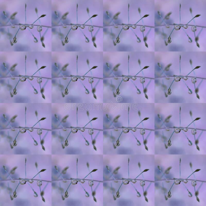 Baisses sur le modèle sans couture d'herbe sur le fond lilas images stock