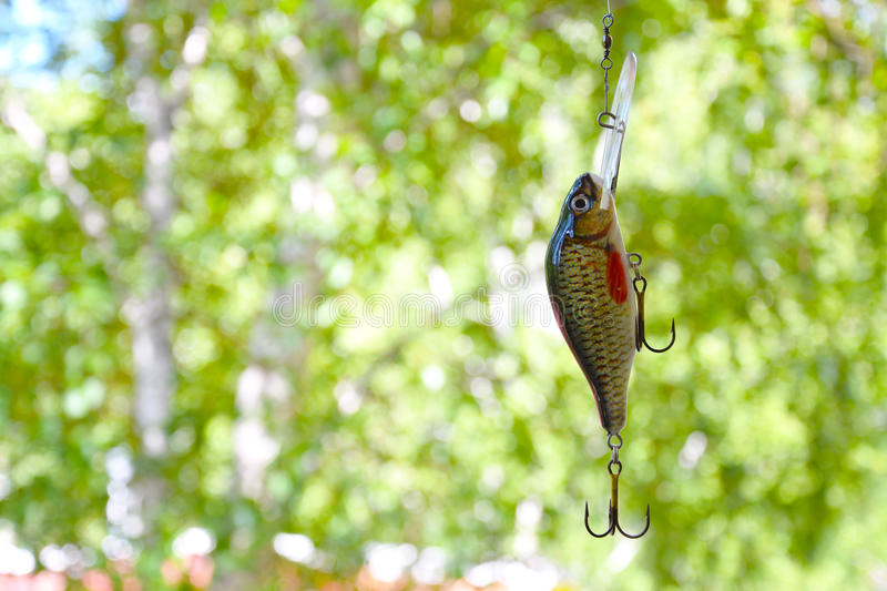Bait number 2 for catching predatory fish in lakes and rivers. Bait number 2 for catching predatory fish in lakes and rivers on a blurred background of trees stock image