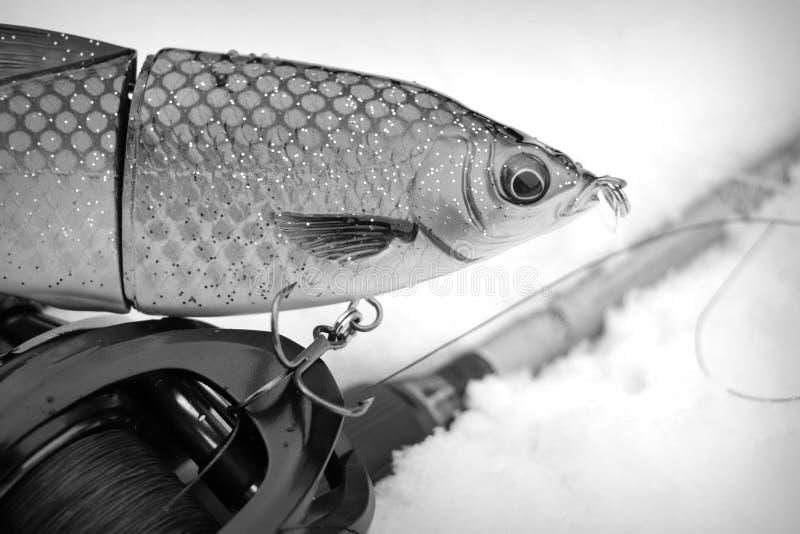 Baitcast-Angelausrüstung und Stecker für große räuberische Fische anlocken lizenzfreie stockfotos