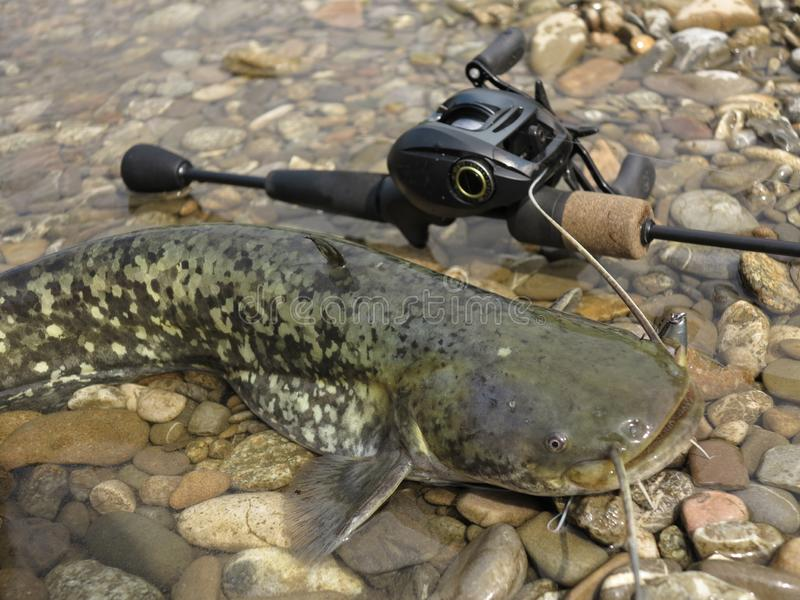 Baitcasting που αλιεύει στην κεντρική Ευρώπη στοκ εικόνα με δικαίωμα ελεύθερης χρήσης