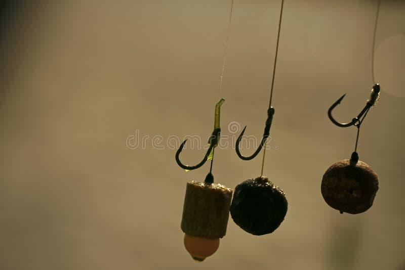 Baits, hooks, sinkers for carp fishing. stock photos
