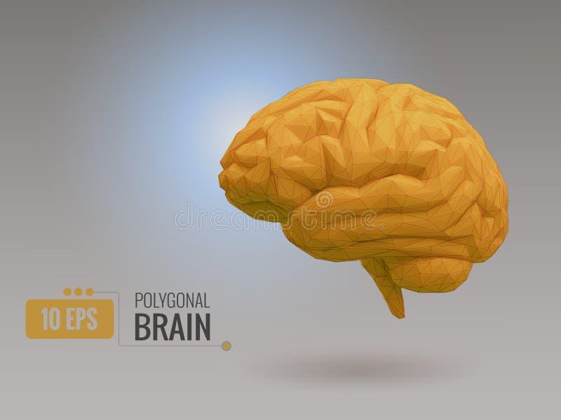 Baixo cérebro amarelo poli na BG cinzenta ilustração do vetor
